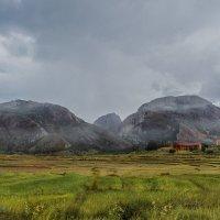 Будни Мадагаскара... :: Александр Вивчарик