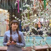 Расцвела у фонтана белоснежная вишня. :: Татьяна Помогалова