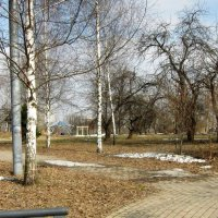 Прогулка в парке :: Людмила Монахова