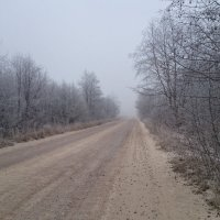 Туман :: Serega