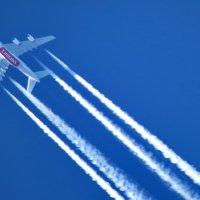 Пролетая над городом :: Светлана