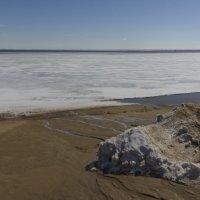 Озеро Большое Яровое :: Алексей Павленко