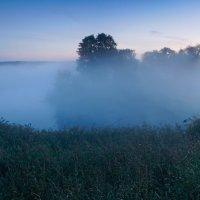 утренний туман :: scbi