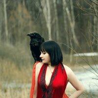 Девушка и ворон. :: Сергей Гутерман