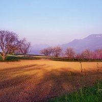 Утро тихо, радостно и молодо :: Elena Wymann