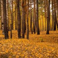 Осень :: Юрий Иванович