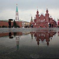 дождь :: Михаил Бибичков