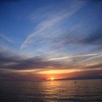 На закате -чайка ловит рыбку :: valeriy khlopunov