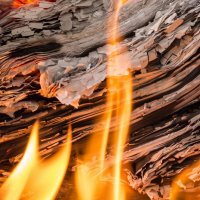 Так горят рукописи :: Anatoliy Pavlov