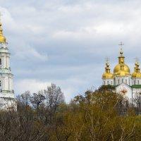 Крестовоздвиженский монастырь. :: Владимир