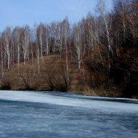 8 апреля. Набухший лёд. :: Валерия  Полещикова