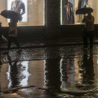 Дождь :: Людмила Синицына