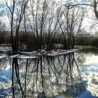 идеальное отражение! :: megaden774
