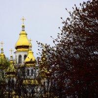 Вербное воскресенье. Харьков :: Elena