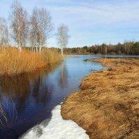Весенние воды :: Павлова Татьяна Павлова
