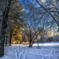 Зимний пейзаж. :: Vadim Piottukh
