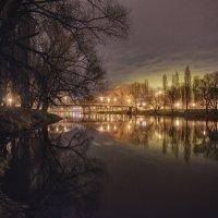 Ночной парк :: Станислав Пересыпкин