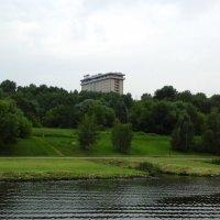 Зелёный берег Москвы-реки :: Дмитрий Никитин
