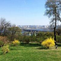 Ботанический сад. :: Сергей Рубан