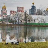 У стен Новодевичьего монастыря.. :: Ирина Шарапова