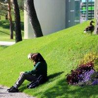 Отдых на траве :: Olga