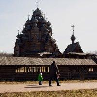 В Невском лесопарке :: Aнна Зарубина