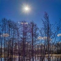 Под мартовским солнцем :: Андрей Дворников