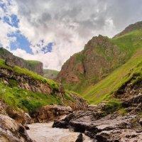 Бурные воды горной реки :: Ольга СПб