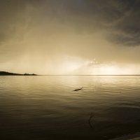 И снова будет солнце :: Gennadiy Karasev