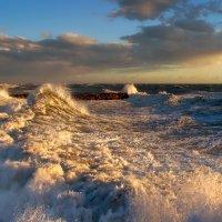 зимний шторм :: svabboy photo