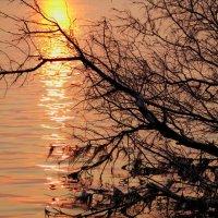 На закат :: Юрий Морозов