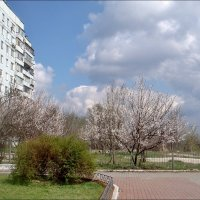 Весенний уголок :: Нина Корешкова
