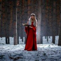 Девушка в Волшебном лесу :: Екатерина Потапова