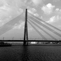 Рига Вантовый мост :: Swetlana V
