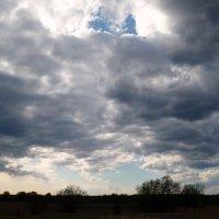 Весеннее небо :: ВладиМер