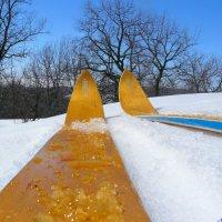 Прокатиться на лыжах в апреле.. :: Андрей Заломленков