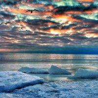 Зимнее море :: Александр Довгий