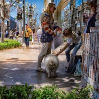 Дамы с собачкой :: Valera Kozlov