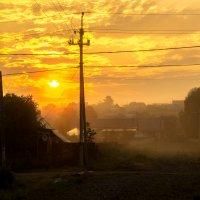 Утро :: Евгения Кузнецова