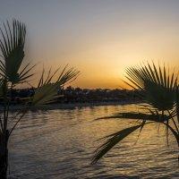 закат на море :: Лариса Батурова
