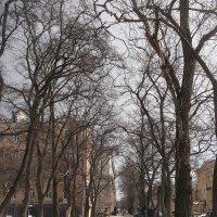 Апрельский пейзаж :: Svetlana Lyaxovich