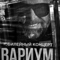ОСТАНОВКА 2 :: Владимир Хроменков