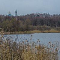 У пруда :: Сергей Цветков