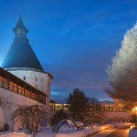 На территотии Новоспасского монастыря :: Alex