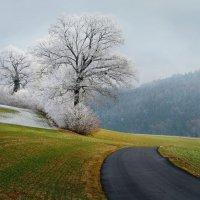 островок зимы :: Elena Wymann