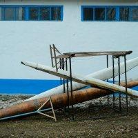 волнения в стае :: StudioRAK Ragozin Alexey