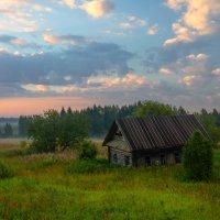 Одинокий и брошенный :: Ксения Соварцева