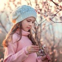 Один раз в год, сады цветут... :: Наталья Кирсанова