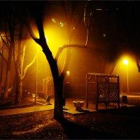 Красный туман. :: Дмитрий Потапов
