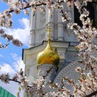 пасха в астраханском кремле (6) :: Дмитрий Олегович